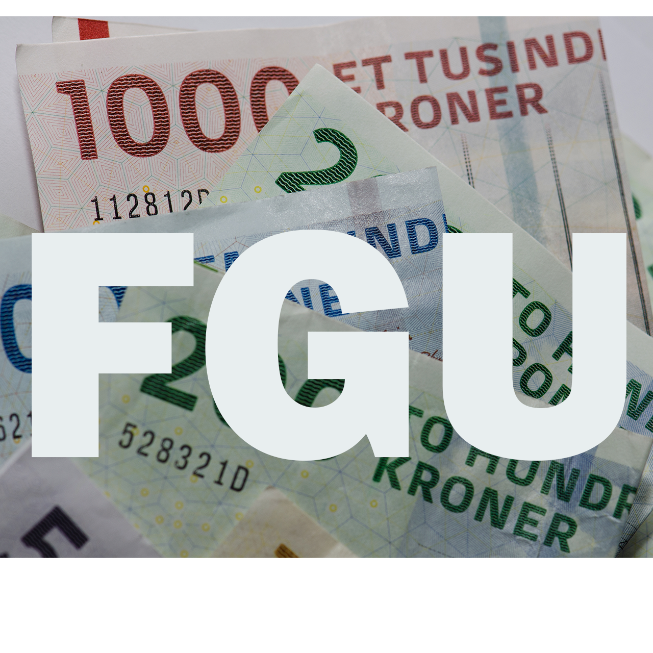 Finansieringen af FGU'en er på plads
